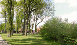 Hundepension Bassel - Umgebung