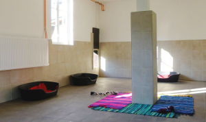 Hundepension Bassel - Unterkunft